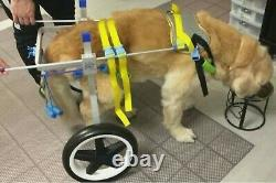 Adjustable Dog Wheelchair, pet Wheelchair, for Large Dogs 70-180 lb
